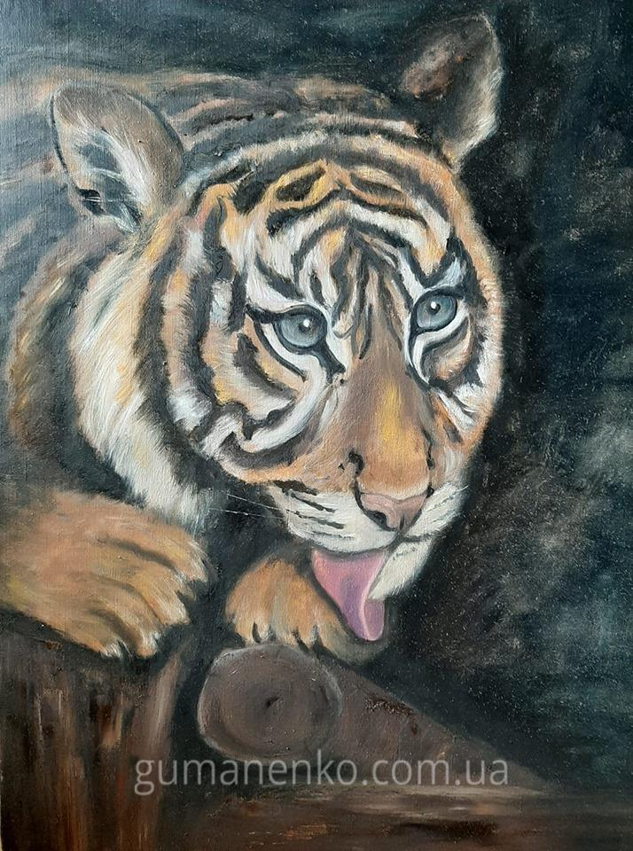 Картина Тигр холст 50х65 см., масло.