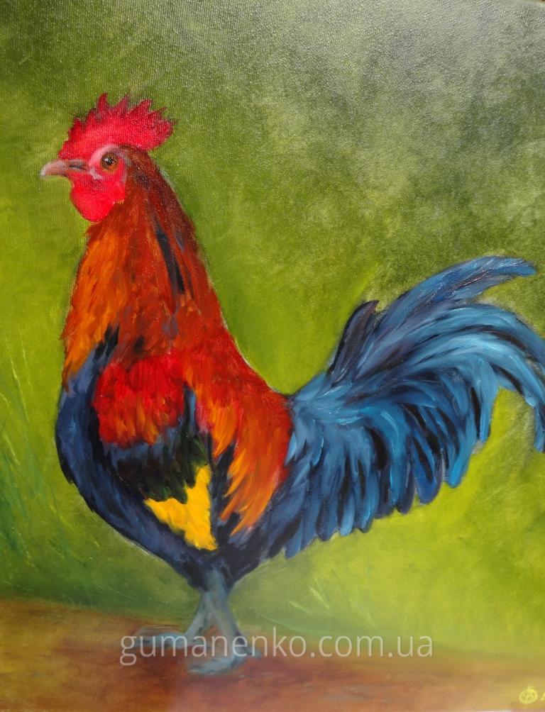 """Картина """"Петушок"""", холст 50х50 см., масло."""