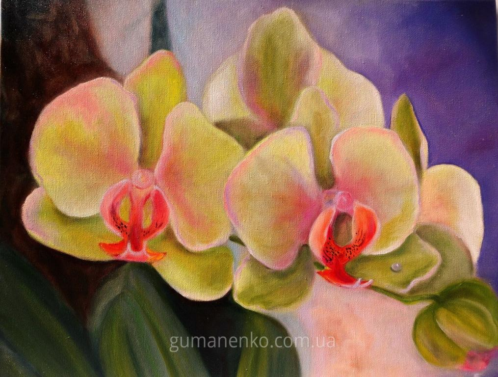 "Картина ""Орхидея 14"",  холст 50х40 см., масло."