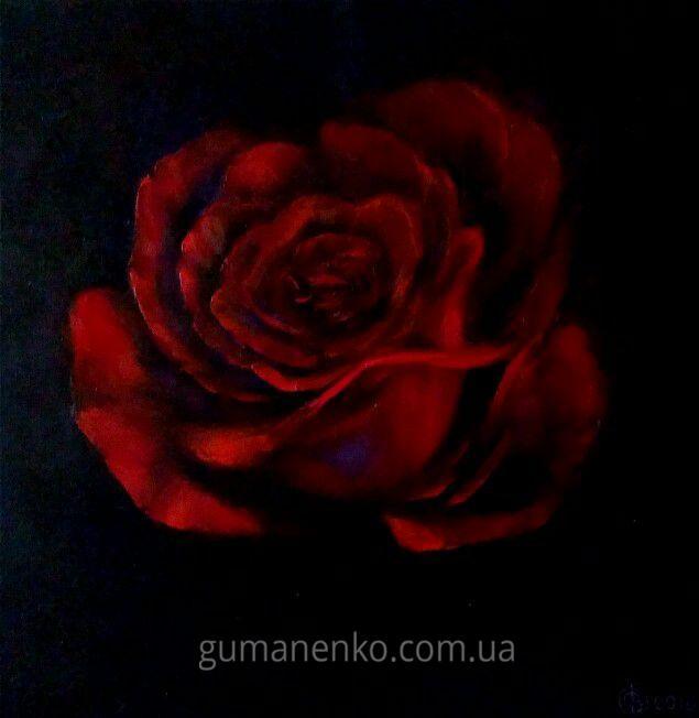 Ночная роза 35х35см.